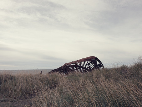 Clo's Next ViewPoint: Boat Cemetery.