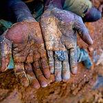 mostra-minerali-clandestini-137041.660x3