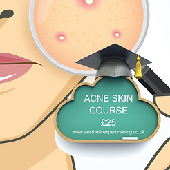 Acne Course.png