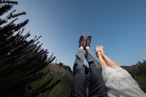 Lavender Ridge wedding locations in reno