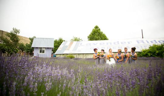 lavender farm wedding venue reno