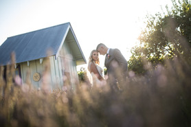 lavender farm wedding reno
