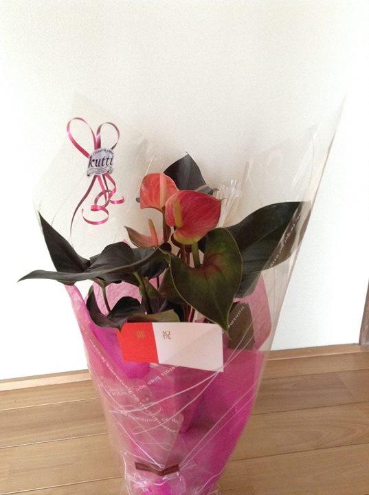 お花、観葉植物、お祝い