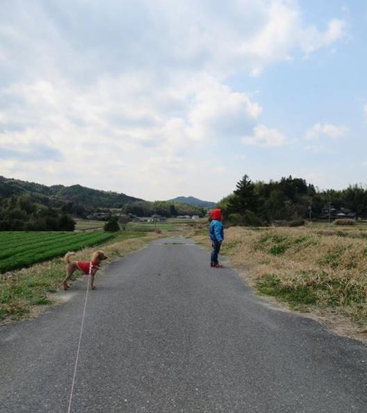 甥っ子と犬、散歩コース、日本一田舎のブラジリアンワックスサロン