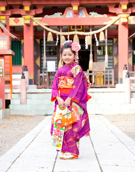 前川神社写真館-七五三-七歳