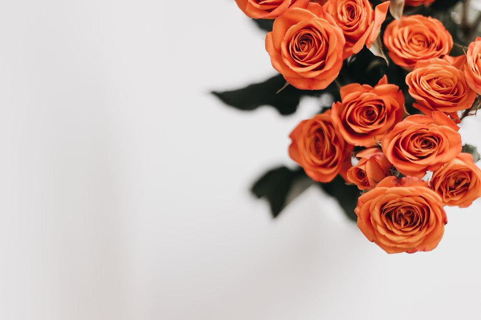 Coral Rose-13.jpg