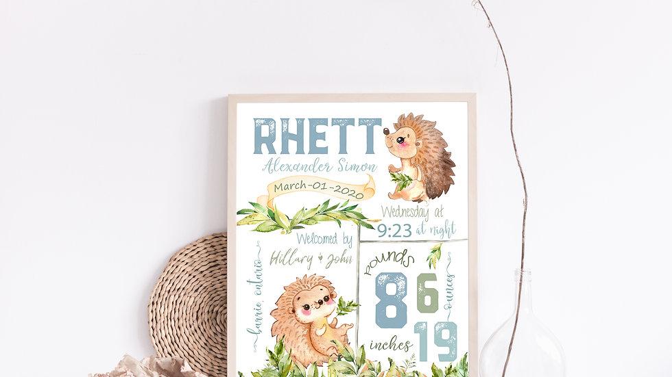 Hedgehog Birth Stat