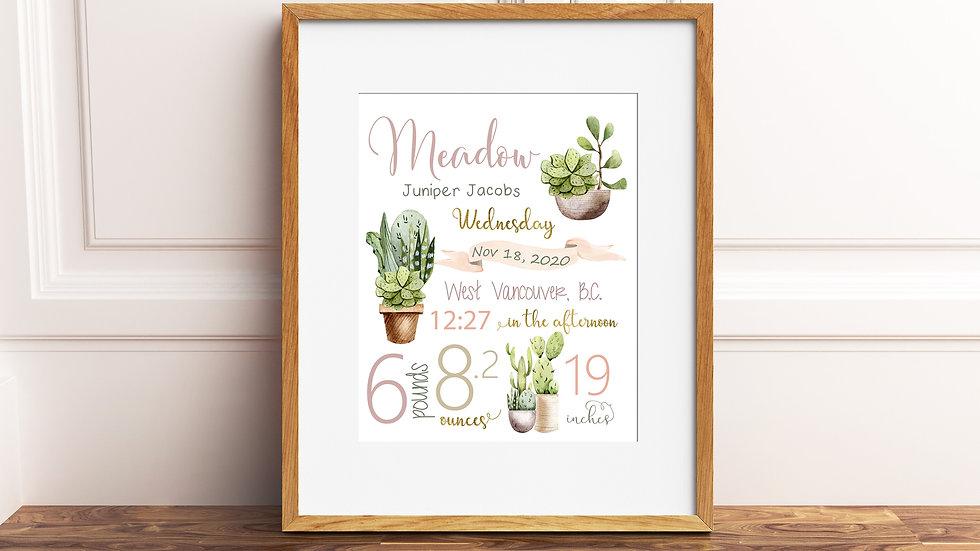 Cactus Birth Stat