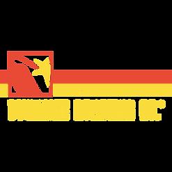 dynamitelogosquare.png