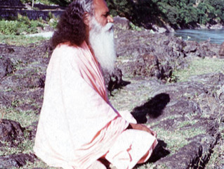 Why Meditate? by Swami Satchidananda