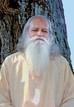 Meditation Medication - Meditação é Medicação - Meditation Medikation -  Meditazione come Medicina -