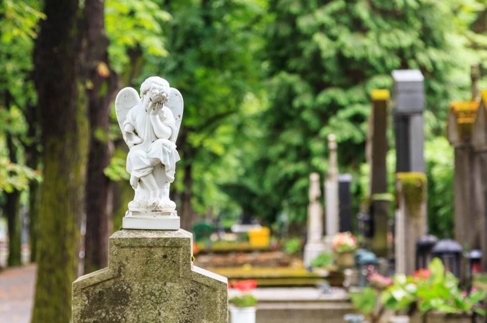 Кладбища в Домодедово