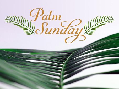 A Palm Sunday Prayer