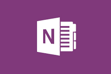 Microsoft Office 2010 OneNote Foundation