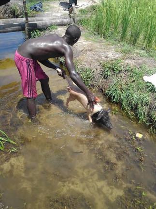 BATHTIME FOR BABE