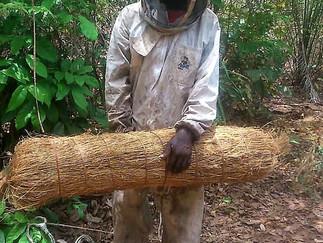 CELEBRATING WORLD BEE DAY IN SIERRA LEONE!