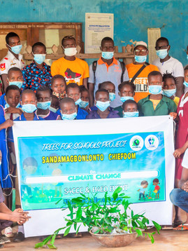 INNOVATIVE 'TREES 4 SALONE SCHOOLS' LAUNCHES