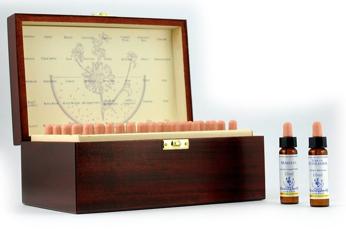 Healing Herbs Holzbox.jpg