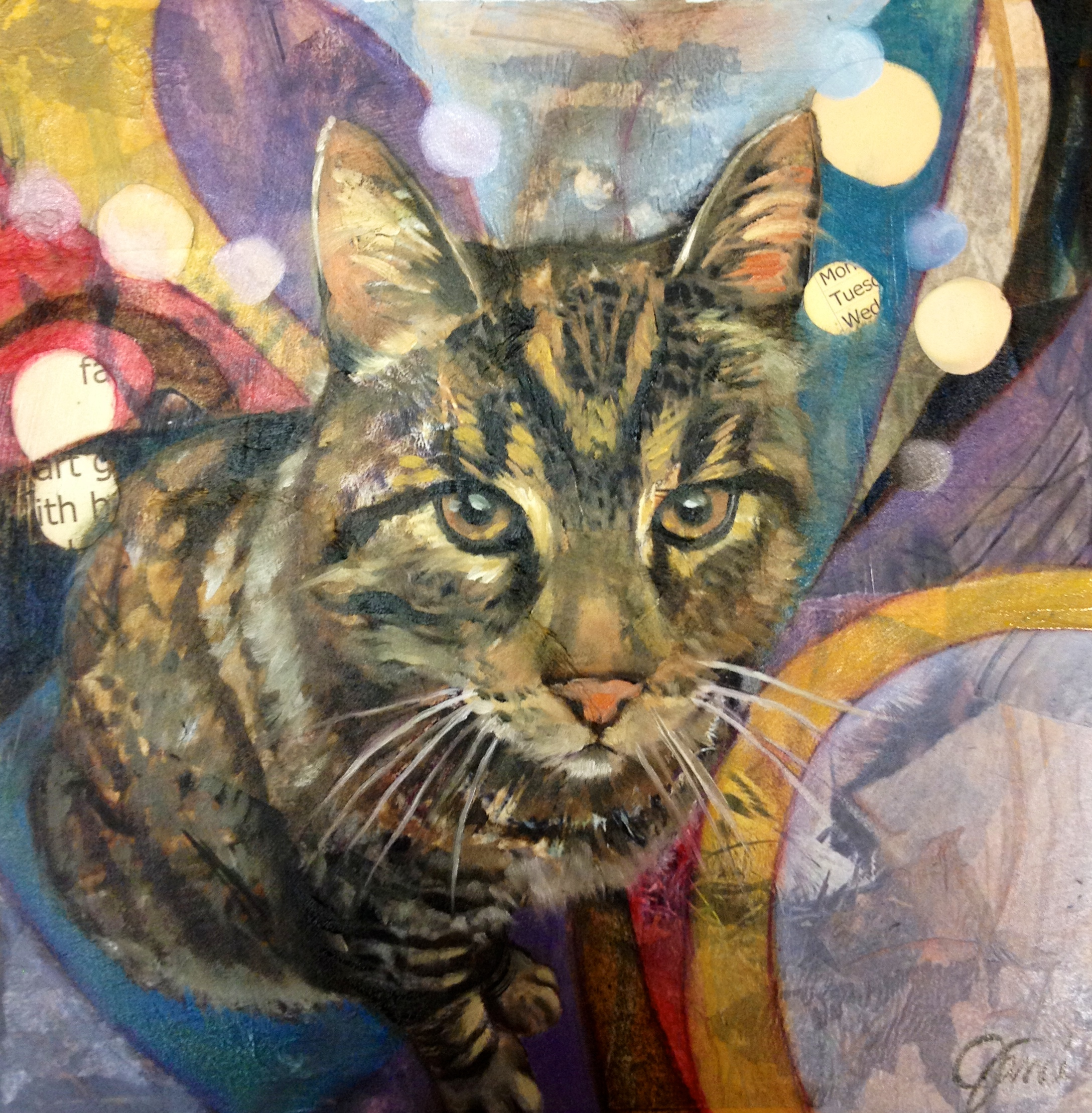 collage portrait of kitty