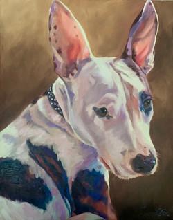 Oil Portrait