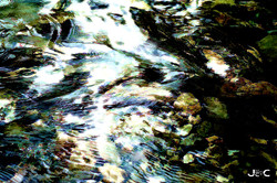 R-Rêve d'eau 7051