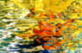 R-Rêve d'eau 7059.jpg