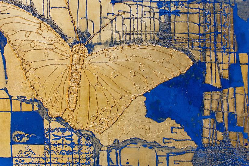 Butterfly VI