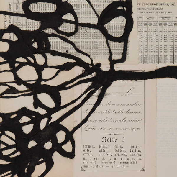 Bibliophile Series- Branches