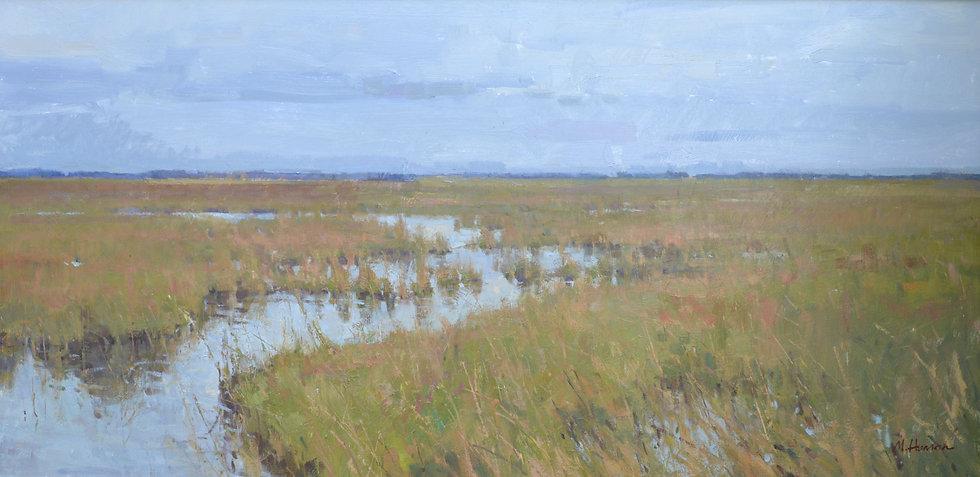 Spring On The Marsh
