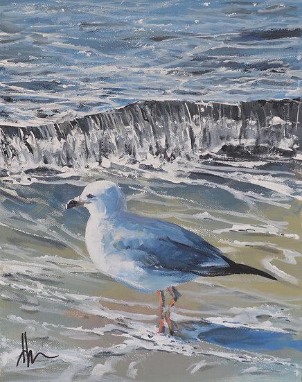 Gull I