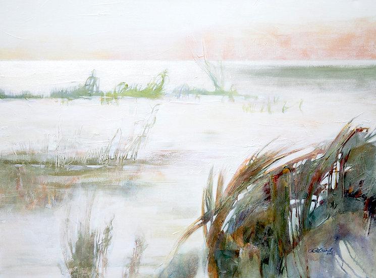 Coastal Dunes Aglow II