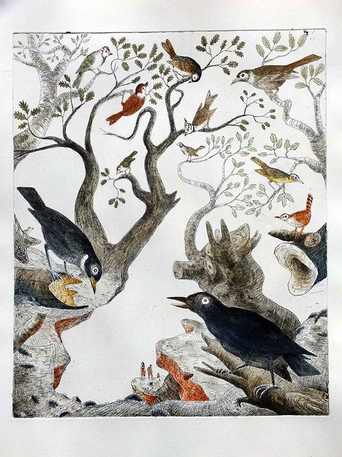 Geschichte der Vögel III Les Corbeaux