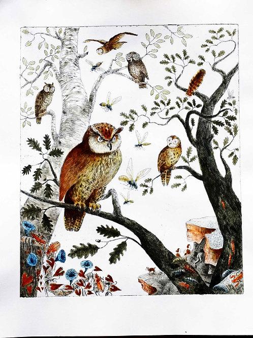 Geschichte der Vögel I