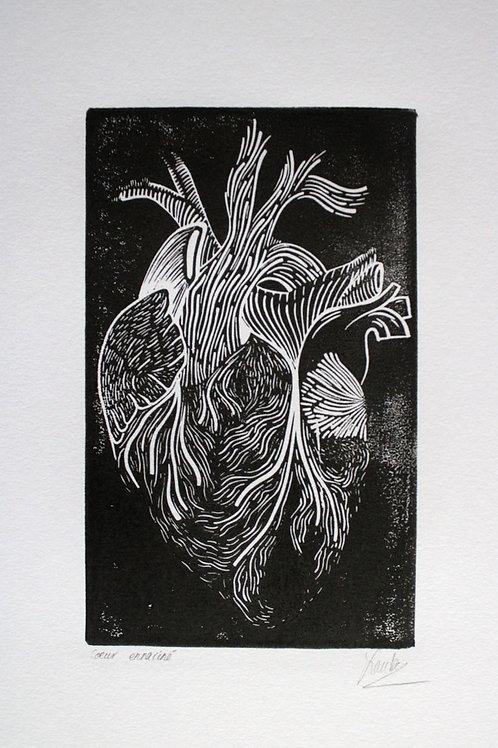 Cœur enraciné