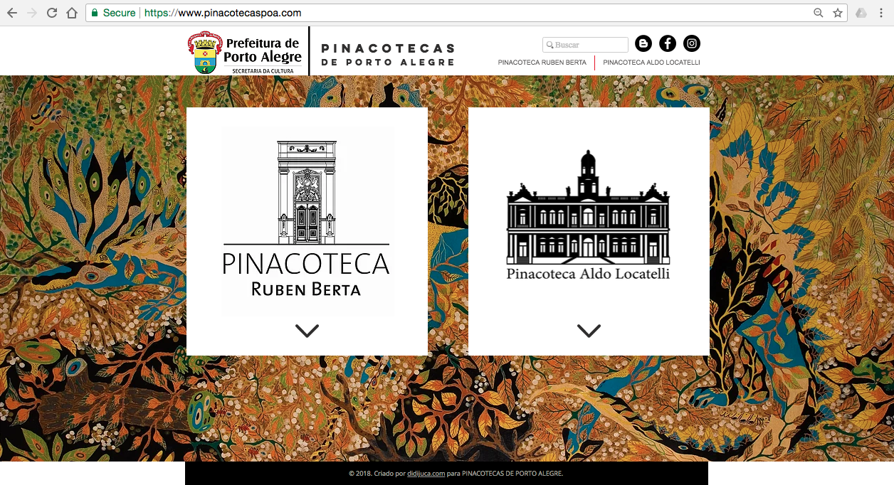 pinacotecaspoa.com