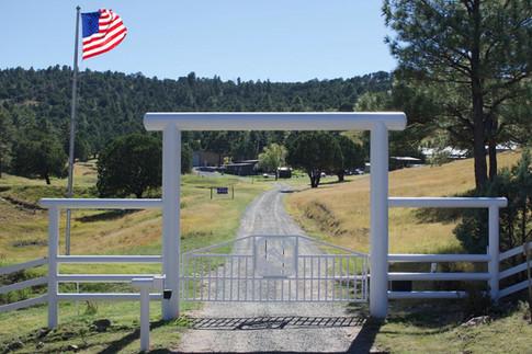 Gate - Large.jpg