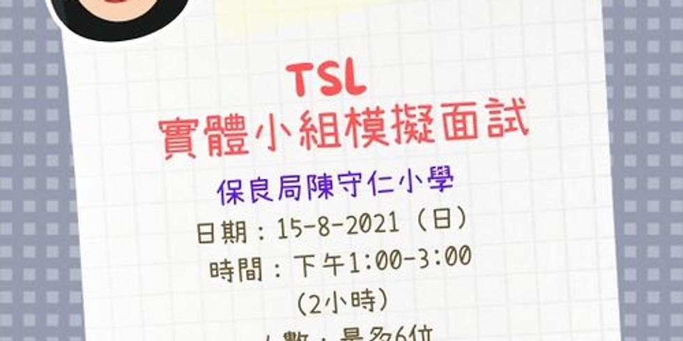 TSL 實體小組模擬面試
