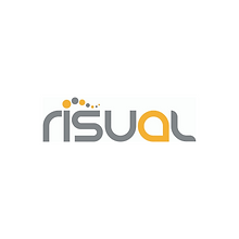 Risual for Wix (2).png