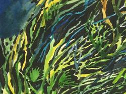 Tangled Reef Detail