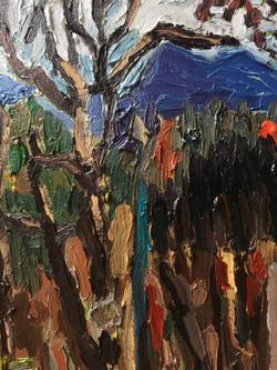 Floyd Woods VI Detail