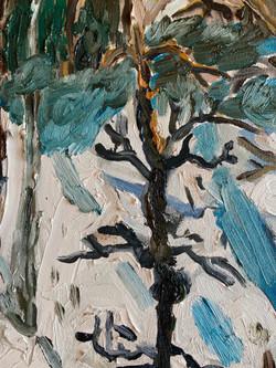 Snowy Woods Detail