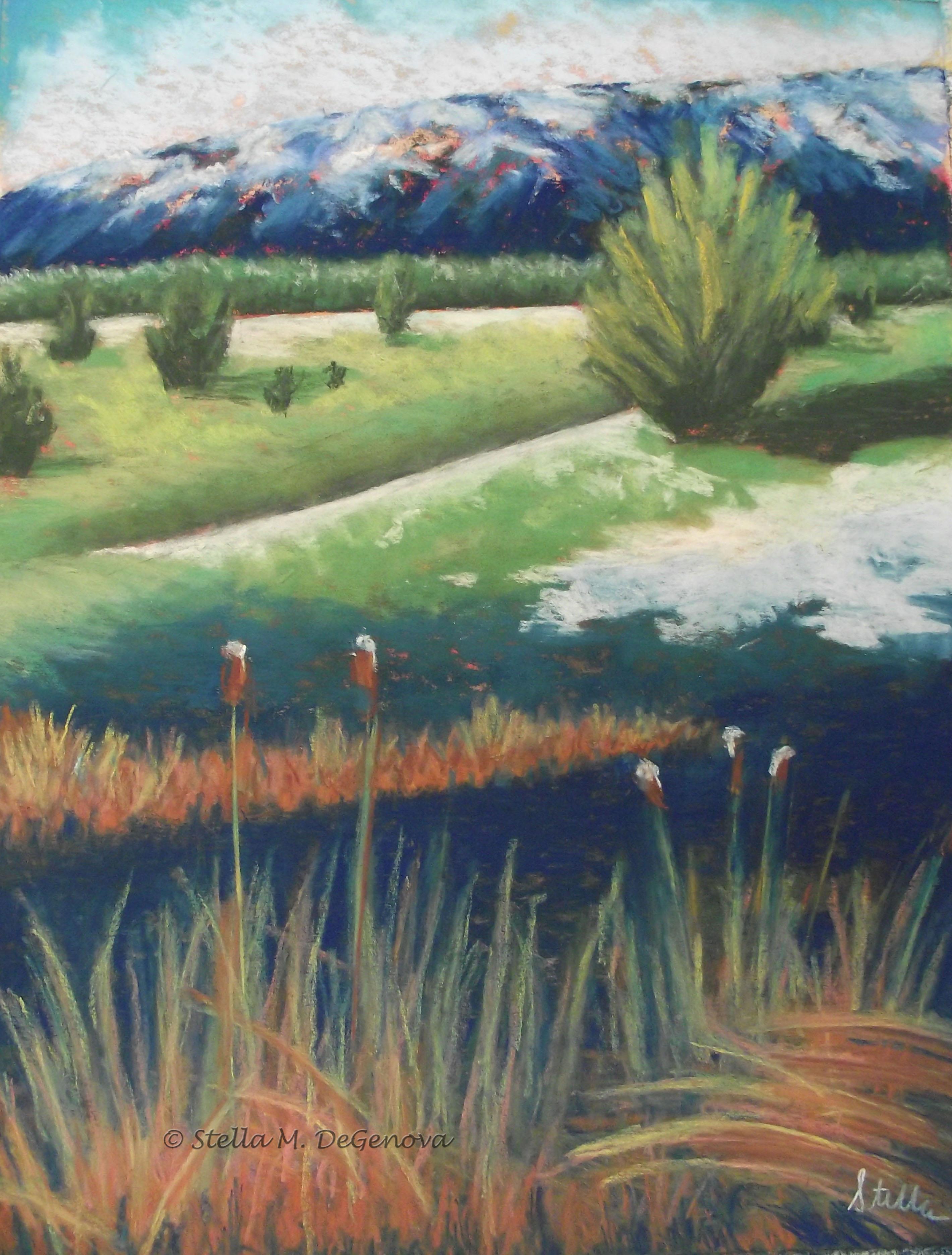 Spring Mountains, pastel, 16 x 20_