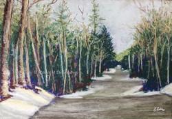 Winter - Door County, pastel, 11 x 14