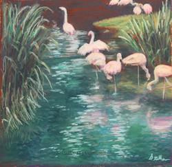 San Diego Wildlife Preserve, pastel, 14 x 14