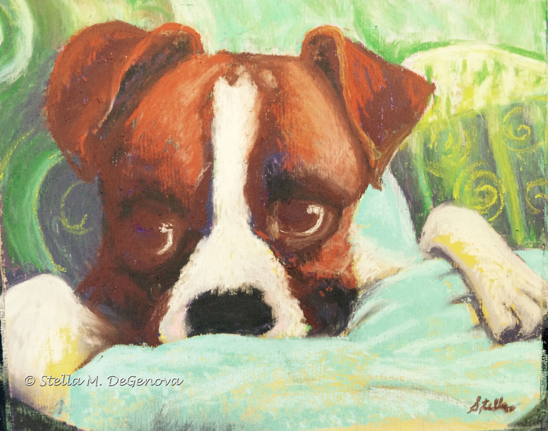 Dexter, pastel, 11 x 14