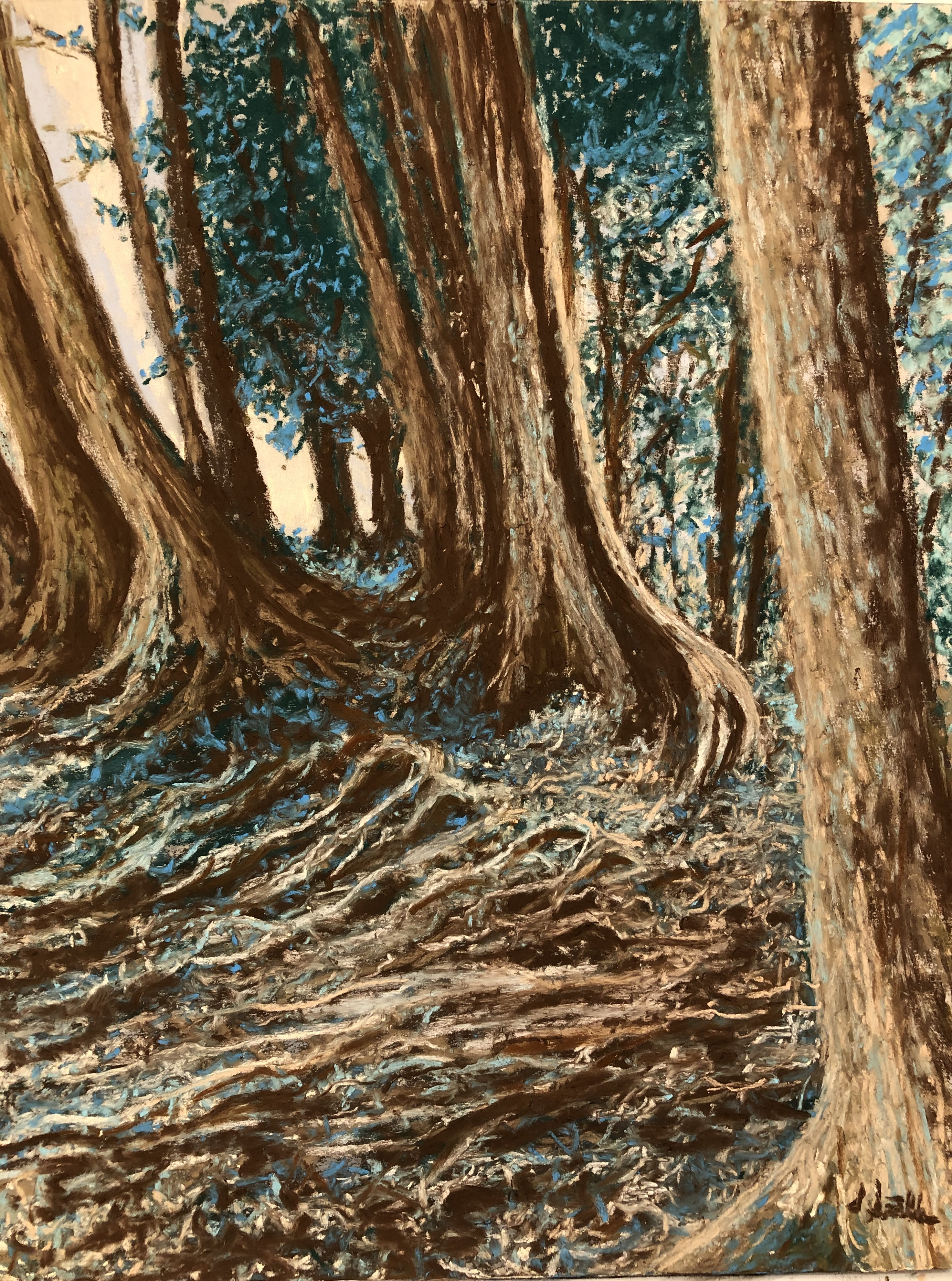 Gnarly Roots, pastel, 9 x 12