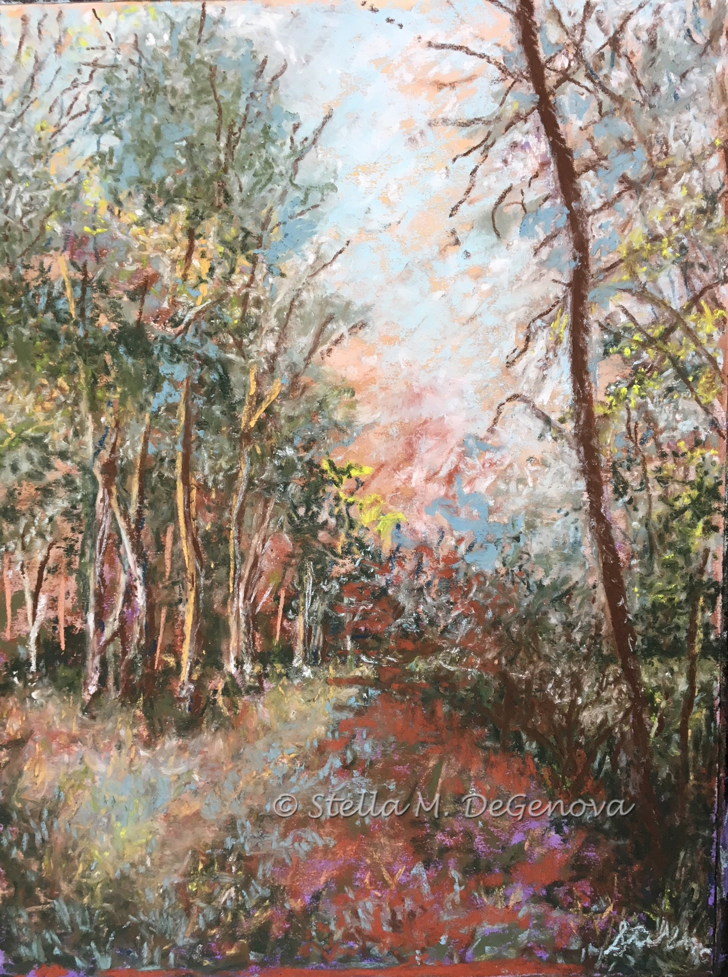Morning Walk, pastel, 12 x 16