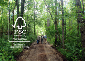 A CALL FOR FOREST CERTIFICATION : THE NEED OF THE HOUR FOR SUSTAINABLE DEVELOPMENT