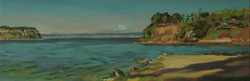 Camano Seascape