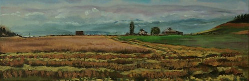 "Ebey's Landing (10"" x 20"" Oil on Canvass)"